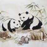 Pandas1 WEB